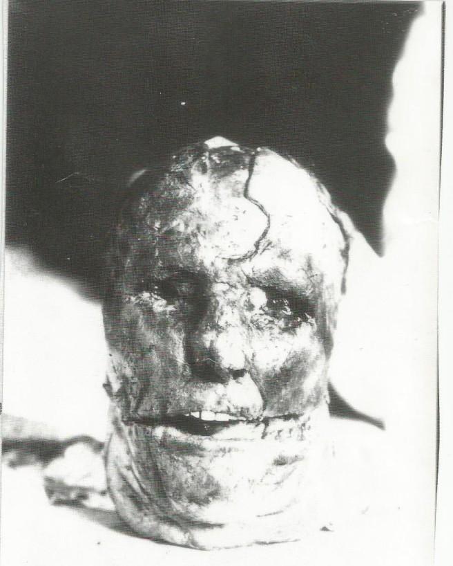 Ole Budsberg skull